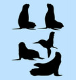 sea lion animal gesture silhouette vector image vector image
