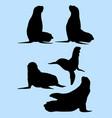 sea lion animal gesture silhouette vector image