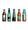 set beer bottle vector image vector image