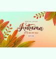 autumn poster background fall floral vector image vector image