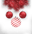 Christmas balls on pine on grayscale vector image