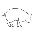 pig line icon sign on vector image