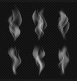 set of transparent gray smoke vector image