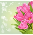 Background of pink tulips vector image vector image