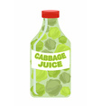 Cabbage juice Juice from fresh vegetables Cabbage vector image
