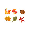 collection bright colorful autumn leaves and vector image