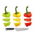 cut bulgarian pepper vector image
