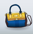 Fancy handbag vector image