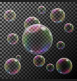 group of transparent colorful soap bubble vector image vector image
