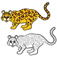 leopard coloring book vector image vector image