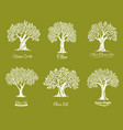 olive trees farm icons set vector image