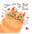 red cat you are my best friend card with sweet vector image vector image