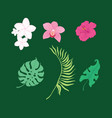 set tropical flowers and leaves vector image