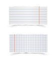 Sheets of school notebooks vector image