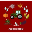 Agriculture flat infographic concept vector image