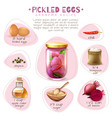 canned food pickled eggs poster vector image
