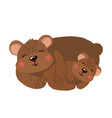 cute hand drawn happy bear family on white vector image