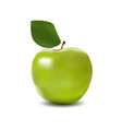 detailed big shiny green apple vector image vector image