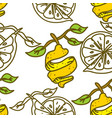lemon fruit pattern seamless template vector image vector image