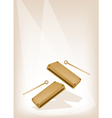Two Musical Wood Block on Brown Stage Background vector image vector image