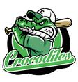 crocodile baseball mascot vector image