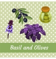 Combination of Basil and olives five items vector image vector image