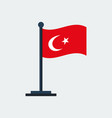 flag of turkeyflag stand vector image vector image