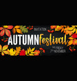 november autumn festival announcement invitation vector image