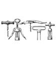 set of corkscrews vector image vector image