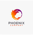 woman head and phoenix logo icon template vector image vector image