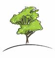 Big tree drawing vector image