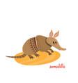 cute armadillo in cartoon style vector image vector image
