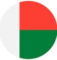 Madagaskar flag vector image vector image