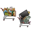 Shopping carts with goods vector image vector image