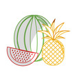 silhouette delicious watermelon fruit with one vector image vector image