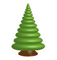 single spruce vector image vector image