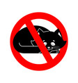 stop cat ban pet is forbidden red prohibitory vector image vector image