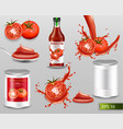 tomatoes realistic set with splash ketchup vector image vector image