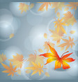 Autumn leaf fall nature background vector image