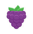 cartoon blackberry isolated vector image