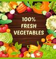 cartoon organic natural food template vector image