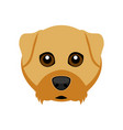 cute airedale terrier dog avatar vector image vector image