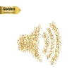 Gold glitter icon of volume isolated on vector image vector image