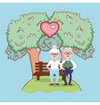 grandparents love relationship cartoon vector image vector image