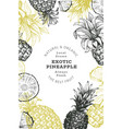hand drawn sketch style pineapple banner organic vector image