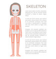 skeleton poster of woman body vector image vector image