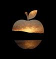 apple shape with sunset background vector image vector image