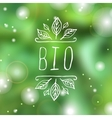 Bio - product label on blurred background vector image vector image