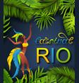 brazilian poster carnival in rio de janeiro vector image vector image