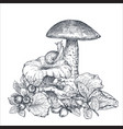 composition hand drawn forest mushrooms vector image vector image